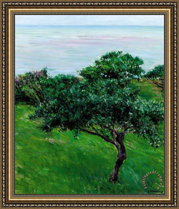 Gustave Caillebotte Apple Trees By The Sea Trouville Framed Print