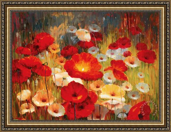 Lucas Santini Meadow Poppies I Framed Print