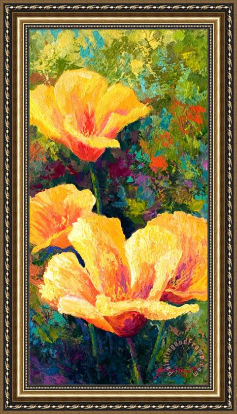 Marion Rose Yellow Field poppies Framed Print