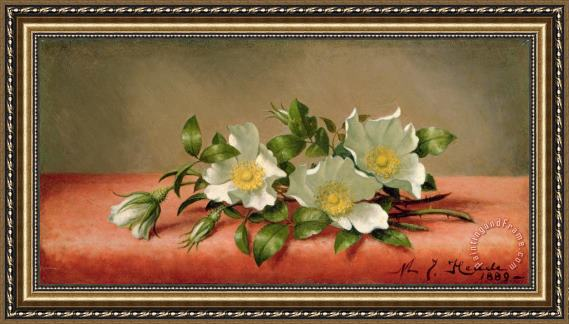 Martin Johnson Heade Cherokee Roses Framed Print