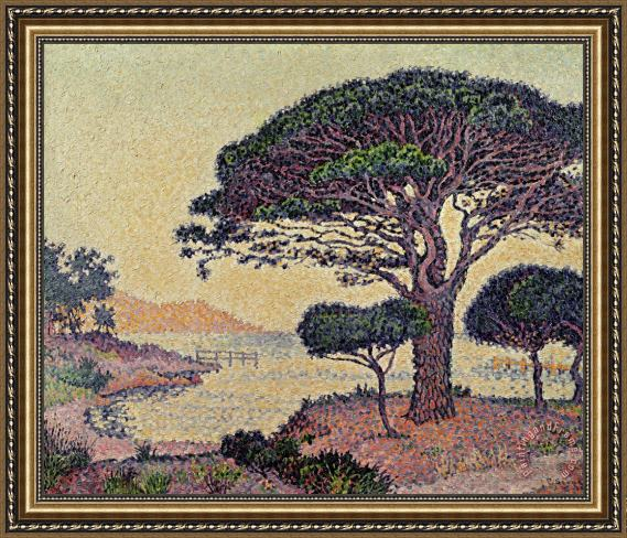Paul Signac Umbrella Pines at Caroubiers Framed Painting