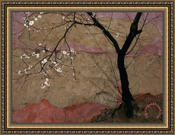 Raymond Gehman Plum Tree Against a Colorful Temple Wall Framed Painting