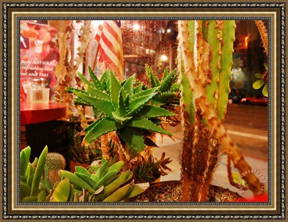 Raymond Gehman San Francisco City Street Seen From Pizzeria Window Lined with Cacti Framed Painting