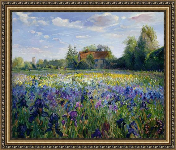 Timothy Easton Evening at the Iris Field Framed Painting