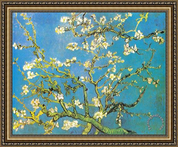 Vincent van Gogh Blossoming Almond-branches Framed Print