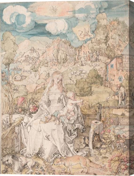 Albrecht Durer Durer Drawing Mary And Animals Stretched Canvas Print / Canvas Art
