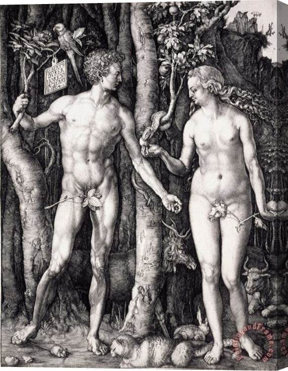 Albrecht Durer The Fall of Man (adam And Eve) Stretched Canvas Print / Canvas Art