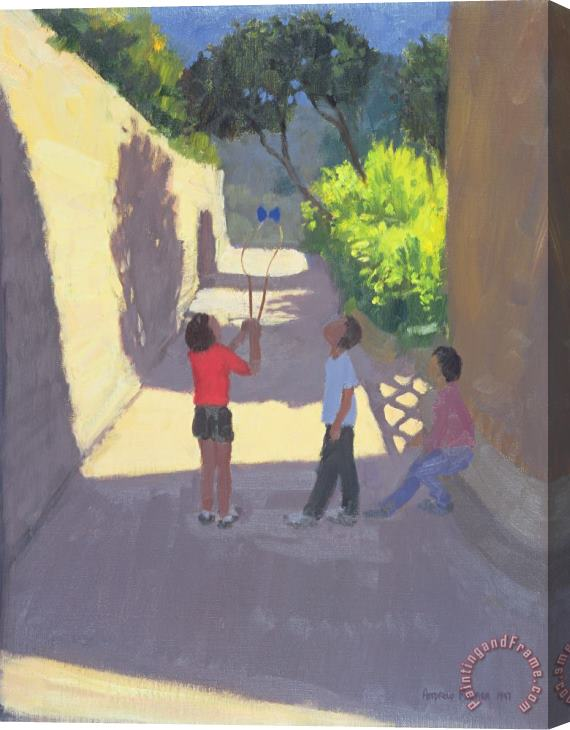 Andrew Macara Diabolo France Stretched Canvas Print / Canvas Art