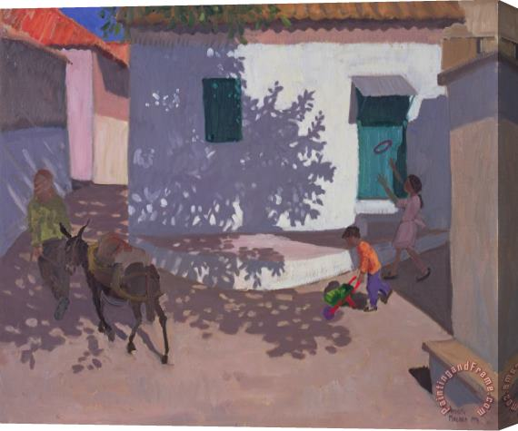 Andrew Macara Green Door and Shadows Lesbos Stretched Canvas Print / Canvas Art