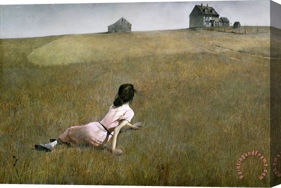 andrew wyeth Christina's World 1948 Stretched Canvas Print / Canvas Art