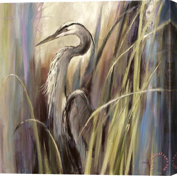 Brent Heighton Coastal Heron Stretched Canvas Print / Canvas Art