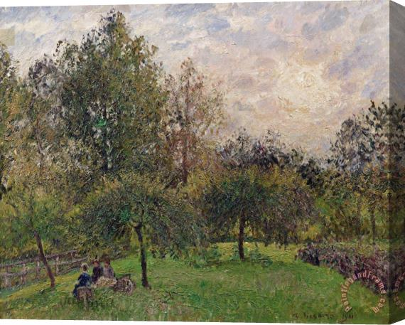 Camille Pissarro Apple Trees and Poplars in the Setting Sun Stretched Canvas Print / Canvas Art