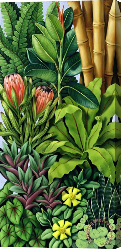 Catherine Abel Foliage III Stretched Canvas Print / Canvas Art