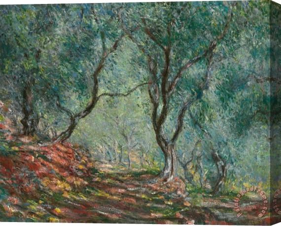 Claude Monet Olive Trees in the Moreno Garden Stretched Canvas Print / Canvas Art