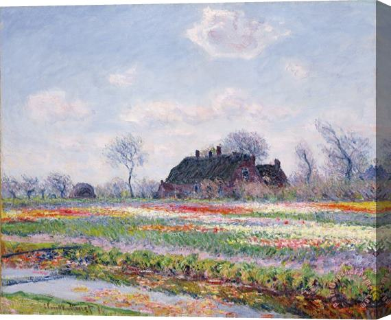 Claude Monet Tulip Fields at Sassenheim Stretched Canvas Painting / Canvas Art
