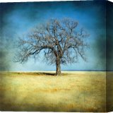 Buy Stretched Canvas Print