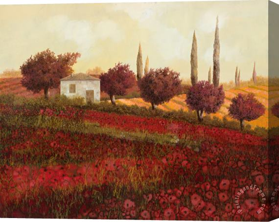 Collection 7 Papaveri In Toscana Stretched Canvas Print / Canvas Art