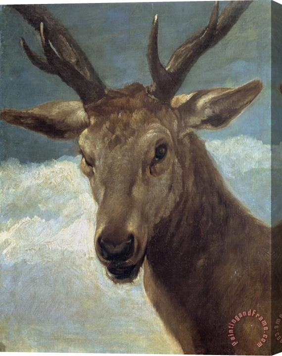 Diego Velazquez Deer Head Stretched Canvas Print / Canvas Art