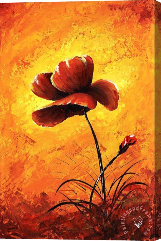 Edit voros my flowers red poppy stretched canvas print canvas edit voros my flowers red poppy stretched canvas print canvas art mightylinksfo