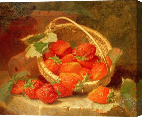 Eloise Harriet Stannard A Basket of Strawberries on a stone ledge Stretched Canvas Print / Canvas Art