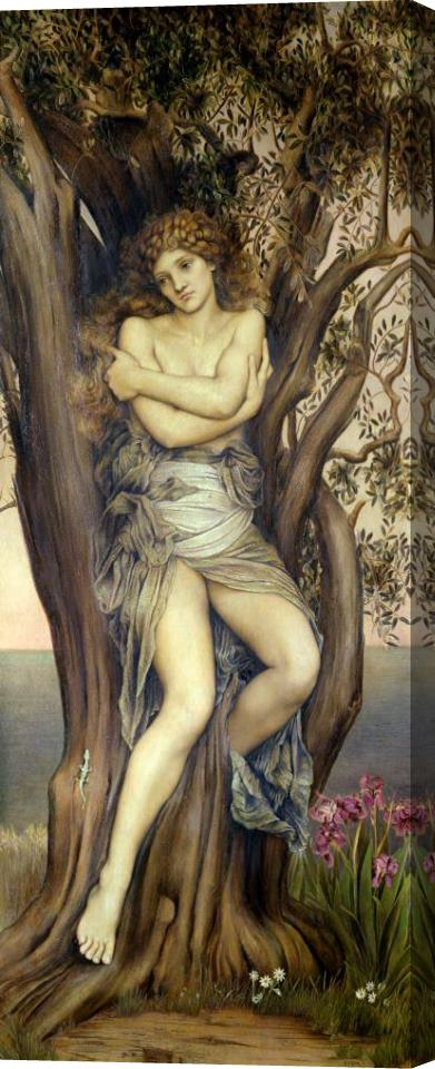 Evelyn De Morgan The Dryad Stretched Canvas Print / Canvas Art