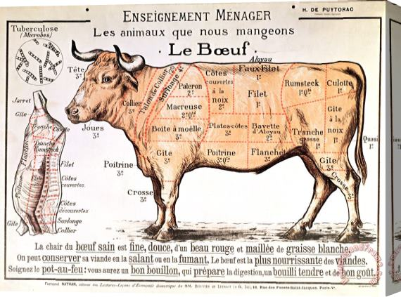 French School Beef Stretched Canvas Print / Canvas Art