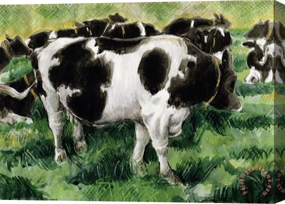 Gareth Lloyd Ball Friesian Cows Stretched Canvas Print / Canvas Art