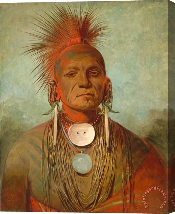George Catlin See Non Ty A An Iowa Medicine Man Stretched Canvas Print / Canvas Art