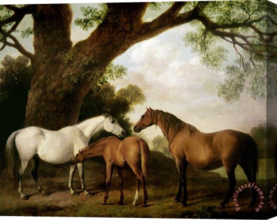 George Stubbs Two Mares and a Foal Stretched Canvas Print / Canvas Art
