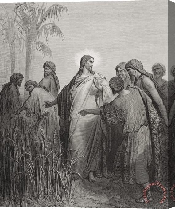 Gustave Dore Jesus And His Disciples In The Corn Field Stretched Canvas Painting / Canvas Art