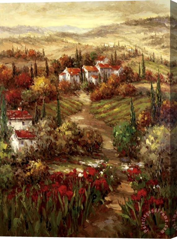 Hulsey Tuscan Village Stretched Canvas Print / Canvas Art
