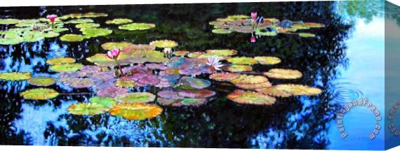 John Lautermilch Peace Among the Lilies Stretched Canvas Print / Canvas Art