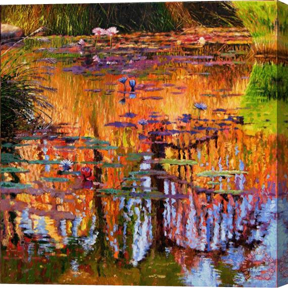 John Lautermilch Ripples on Fall Pond Stretched Canvas Print / Canvas Art
