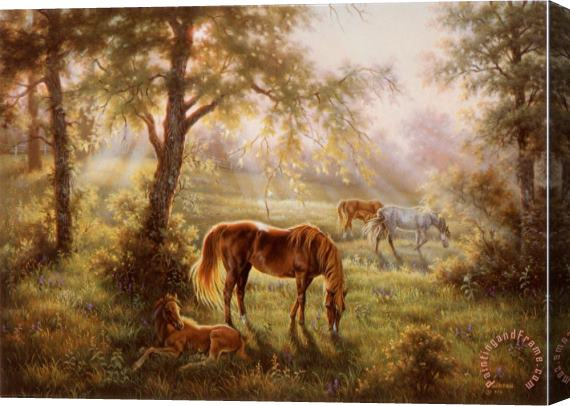 Judy Gibson A Summer Morn Stretched Canvas Print / Canvas Art