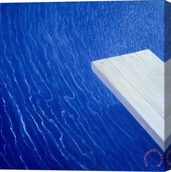 Lincoln Seligman Diving Board 2004 Stretched Canvas Print / Canvas Art