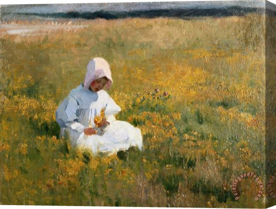 Marianne Stokes In a Field of Buttercups Stretched Canvas Print / Canvas Art