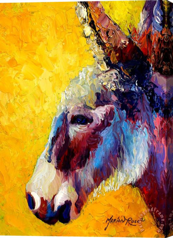 Marion Rose Burro Study II Stretched Canvas Painting / Canvas Art