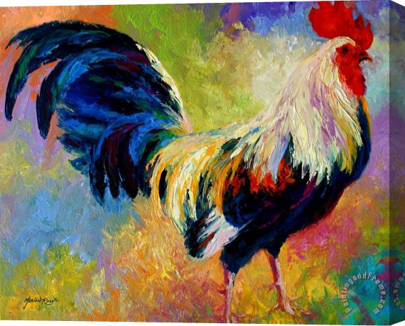 Marion Rose Eye Candy - Rooster Stretched Canvas Print / Canvas Art