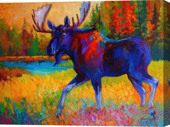 Marion Rose Majestic Monarch - Moose Stretched Canvas Print / Canvas Art