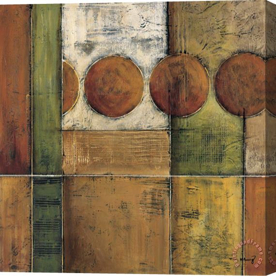 Mike Klung Diversity II Stretched Canvas Print / Canvas Art