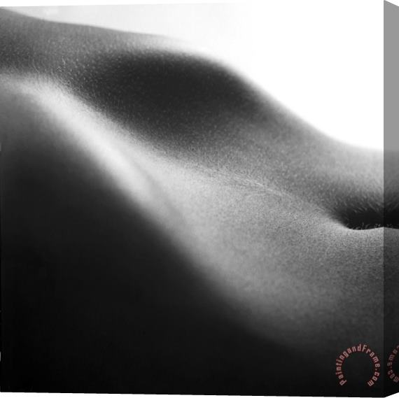 Others Human form abstract body part Stretched Canvas Print / Canvas Art