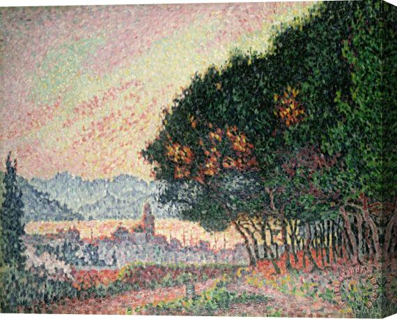 Paul Signac Forest near St Tropez Stretched Canvas Print / Canvas Art
