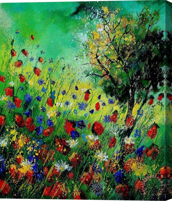 Pol Ledent Wild Flowers 670130 Stretched Canvas Print / Canvas Art