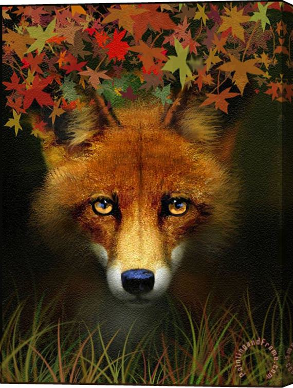 Robert Foster Leaf Fox Stretched Canvas Print / Canvas Art