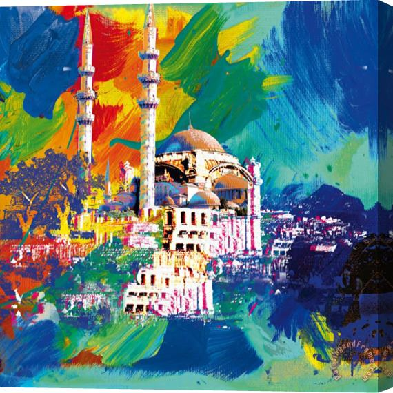 Robert Holzach Istanbul Stretched Canvas Print / Canvas Art