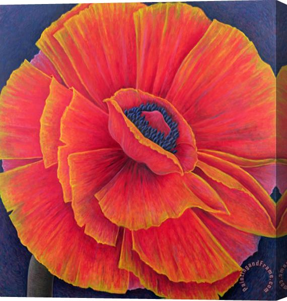 Ruth Addinall Big Poppy Stretched Canvas Painting / Canvas Art