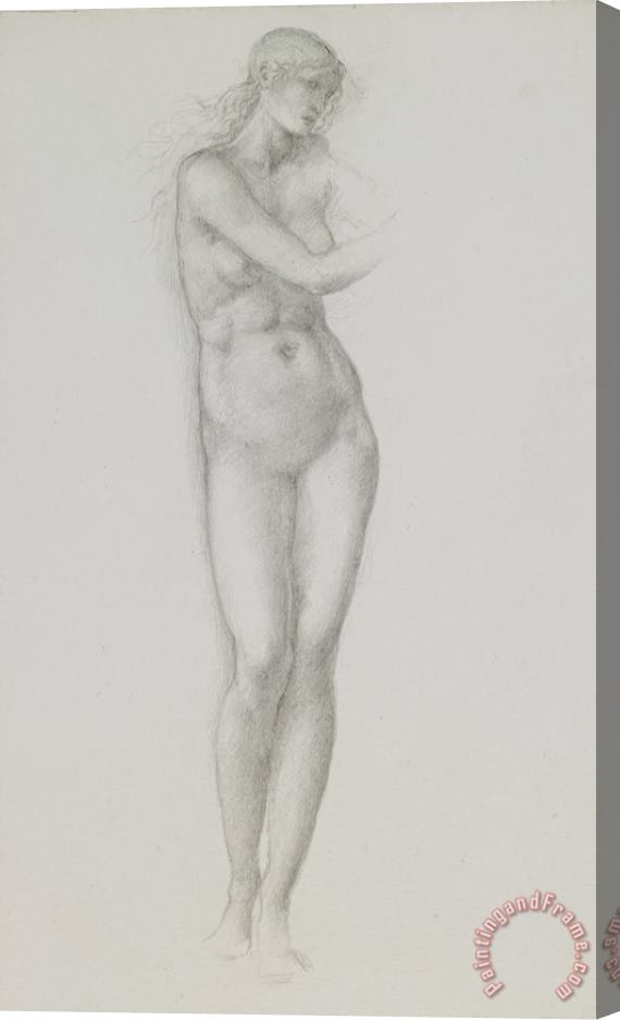Sir Edward Coley Burne-Jones Nude Female Figure Study For Venus From The Pygmalion Series Stretched Canvas Print / Canvas Art