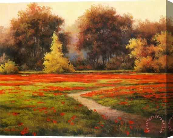 T. C. Chiu Poppy Meadows I Stretched Canvas Print / Canvas Art