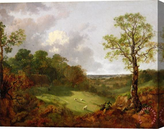 Thomas Gainsborough Wooded Landscape with a Cottage - Sheep and a Reclining Shepherd Stretched Canvas Print / Canvas Art