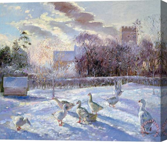 Timothy Easton Winter Geese in Church Meadow Stretched Canvas Print / Canvas Art